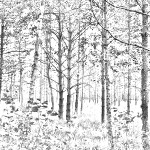 This pictures done has trees in it